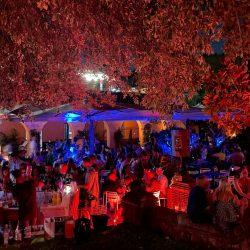 BoBo Cocktail Bar Casa Del Jazz 2